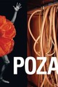 Poza: On the Polishness of Polish Contemporary Art