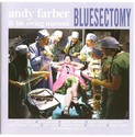 Andy Farber & His Swing Mavens - Bluesectomy