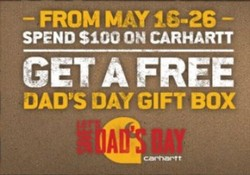 carhartt dads day banner