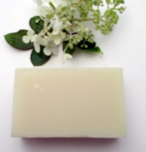 GENTLE ALOE LIGHT SCENT ORGANIC BODY SOAP BUY 2 & SAVE