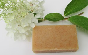 HONEY CORNMEAL EXFOLIATING ORGANIC BODY SOAP Buy 2 & Save