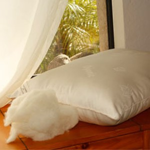 KAPOK PILLOW Healthy, Down-Like Feel