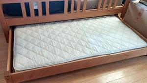 PACIFIC RIM TRUNDLE BED CLASSIC