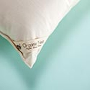 ORGANIC VEGAN COTTON PILLOW QUEEN Buy 2 & Save